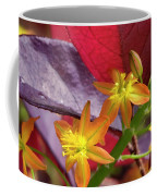 Spring Blossoms 2 Coffee Mug