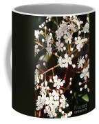 Spring Blossoms Macro Coffee Mug