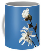 Spring Blue Sky Floral Art Print White Magnolia Tree Baslee Troutman Coffee Mug