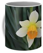 Spring Bow Coffee Mug