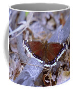 Spring Butterfly  Coffee Mug