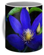 Spring Clematis Coffee Mug