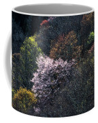 Spring Colors On The Parkway Coffee Mug
