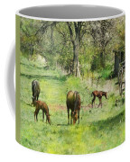 Spring Colts Coffee Mug by John Robert Beck