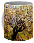 Spring Comes To The Old Cherry El Valle New Mexico Coffee Mug