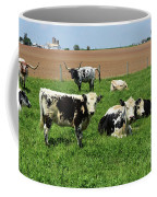 Spring Day With Cows On An Amish Cattle Farm Coffee Mug