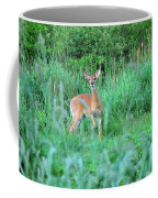 Spring Deer Coffee Mug
