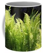 Spring Fern Fronds Coffee Mug