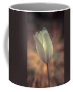 Spring Flower 4 Coffee Mug