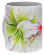 Spring Flower Macro Coffee Mug