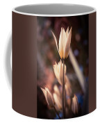 Spring Flowers 2 Coffee Mug