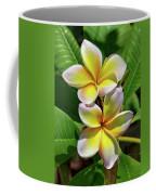 Spring Flowers 8 Coffee Mug