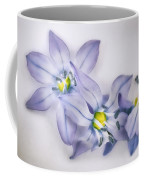Spring Flowers On White Coffee Mug