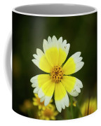 Spring Flowers Shell Road Coffee Mug