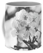 Spring Flowers - White Coffee Mug