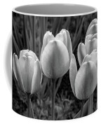 Spring Garden - Act One 2 Bw Coffee Mug