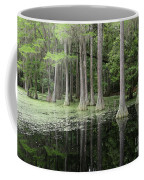 Spring Green In Cypress Swamp Coffee Mug
