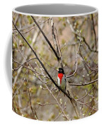 Spring Grosbeak Coffee Mug