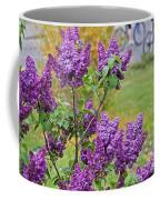 Spring Has Arrived Coffee Mug