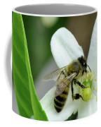 Spring Honey Bee Pollinates Orange Citrus Flower Coffee Mug