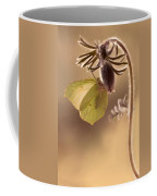 Spring Impression With Pasque Flower Coffee Mug