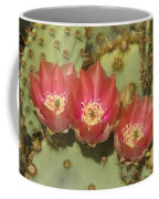 Spring In Arizona Coffee Mug