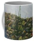 Spring In Borrego Coffee Mug