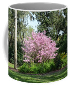 Spring In Florida Coffee Mug