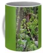 Spring In The Mountains At American Fork Canyon Utah Coffee Mug