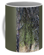 Spring In The Timber Coffee Mug