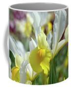 Spring Irises Flowers Art Prints Canvas Yellow White Iris Flowers Coffee Mug