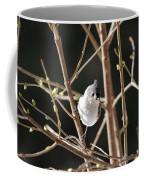 Spring Is On The Way Coffee Mug