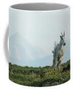 Spring Layers Coffee Mug