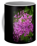 Spring Lilacs On Black Coffee Mug