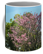 Spring Magnolia In Winter Park  Coffee Mug