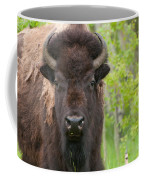 Spring Matriarch Coffee Mug