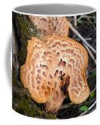 Spring Mushrooms Coffee Mug
