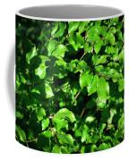 Spring New Beech Leaves Coffee Mug