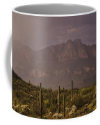 Spring Rain In The Sonoran  Coffee Mug