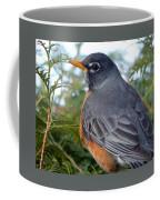 Spring Returns Coffee Mug