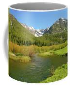 Spring Run Off Coffee Mug