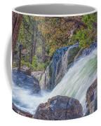 Spring Runoff Coffee Mug