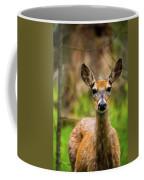 Spring Shed Coffee Mug