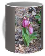 Spring Slippers Coffee Mug