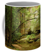 Spring Stream Coffee Mug