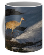 Spring Sunset With Sandhill Crane Coffee Mug