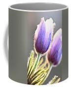 Spring Time Crocus Flower Coffee Mug