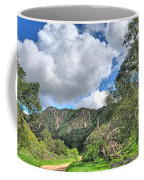 Spring Trail In The Canyon Coffee Mug
