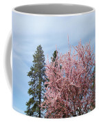 Spring Trees Bossoming Landscape Art Prints Pink Blossoms Clouds Sky  Coffee Mug