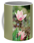 Spring Tulips 160 Coffee Mug